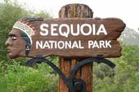 Sequoia National Park Road Trip
