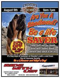 Bloodhound Blood Drive