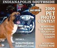 Harley Davidson And Buell Pet Photo Contest